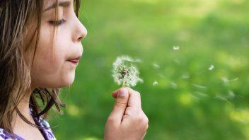 「思いこみ」を手放して、うまくいく体質に変わる『心の置き方の7つの秘訣』